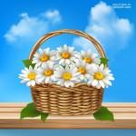 Vector hoa lá cành đẹp 50
