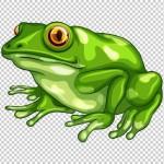 Vector con ếch xanh