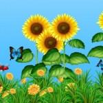 Vường hoa hướng dương vector 1