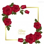 Bông hoa hồng hoa lá vector 9