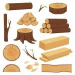 Vector củi gỗ, bào gỗ, tấm gỗ