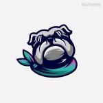 Biểu tượng Mascot Vector 4