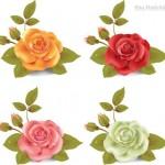 Vector bông hoa hồng đẹp #1