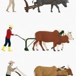Nông Dân Cày Ruộng Với Bộ Vector Bò Vector